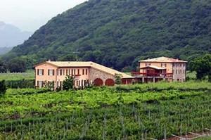 Appartamenti Ca' Vettor - Bardolino (Affi)