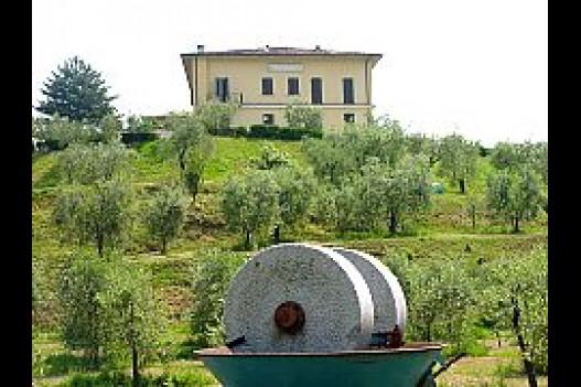Azienda Agricola Manestrini